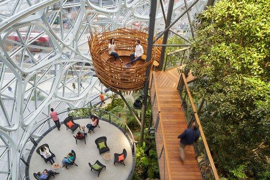 Amazon oficinas con plantas