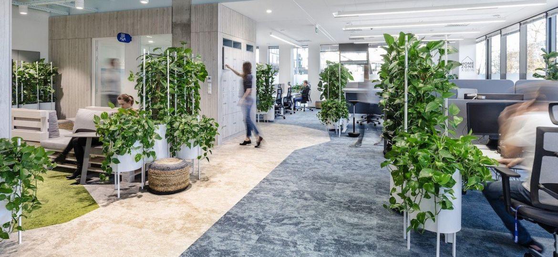 plantas para oficinas